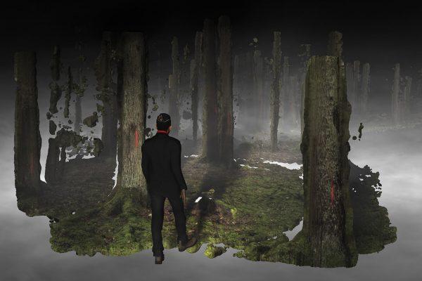 Still forest - Broersen Lukacs-bijgesneden
